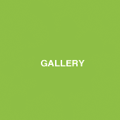 galleryplain